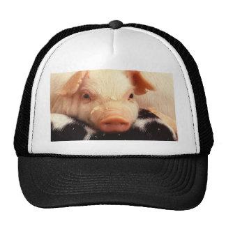 Lazy Piglet Trucker Hats
