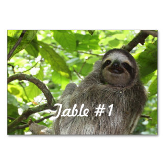 Lazy Sloth Table Cards