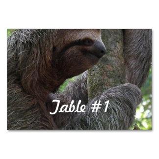 Lazy Sloth Table Card