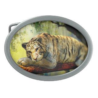 Lazy Tiger Belt Buckles