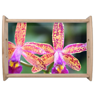 Lc Tropical Pointer Large Tray