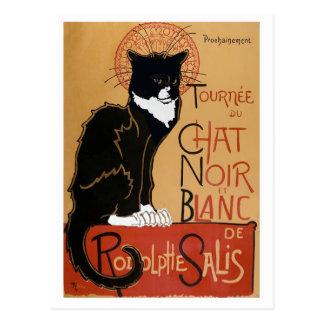 Le Chat Noir et Blanc Postcard