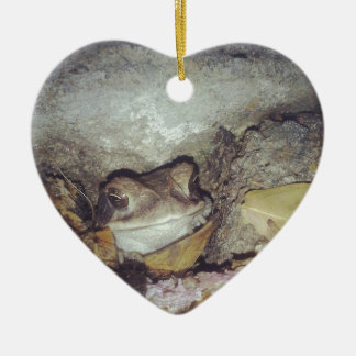 Le Toad Nighttime Nature Photography Christmas Tree Ornament