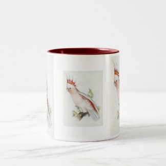 Leadbeater's Cockatoo Two-Tone Coffee Mug