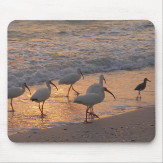 Leader of the Flock Mouse Pad