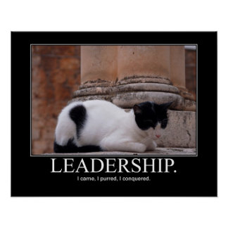 Leadership Cat Artwork Poster