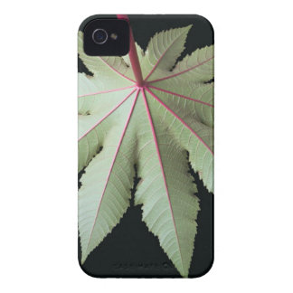 Leaf and Stem Case-Mate iPhone 4 Cases