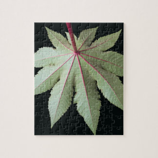 Leaf and Stem Jigsaw Puzzle