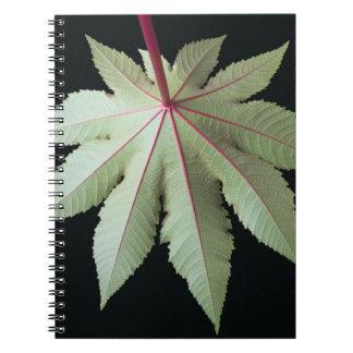 Leaf and Stem Notebook