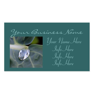 Leaf And Water Drop Pack Of Standard Business Cards