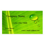 Leaf and water drops business card template