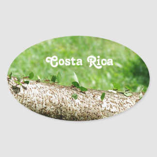 Leaf Cutter Ants in Costa Rica Oval Sticker