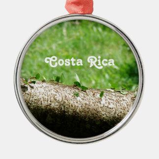Leaf Cutter Ants in Costa Rica Silver-Colored Round Decoration
