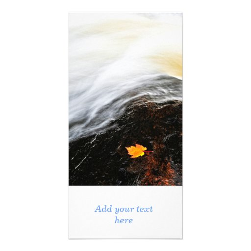 Leaf floating in river photo card template