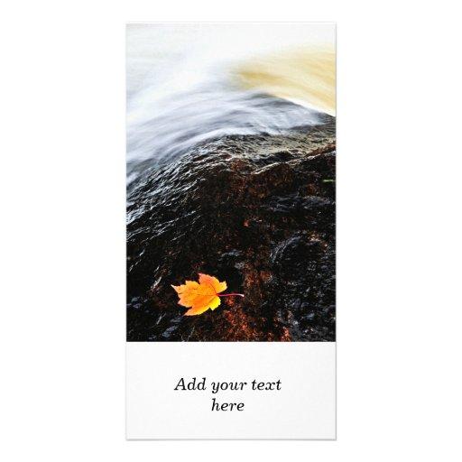 Leaf floating in river custom photo card