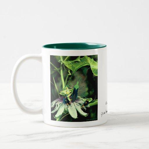 Leaf Footed Bug Mug