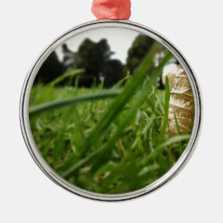 Leaf in grass christmas ornament
