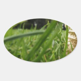 Leaf in grass oval sticker