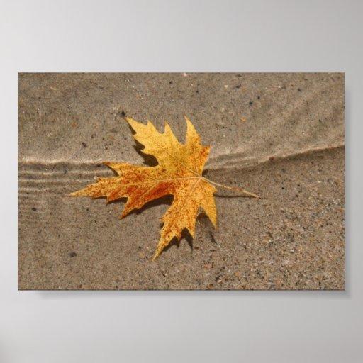 Leaf in Lake Poster