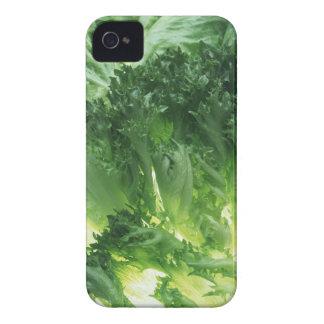 Leaf Lettuce Case-Mate iPhone 4 Cases