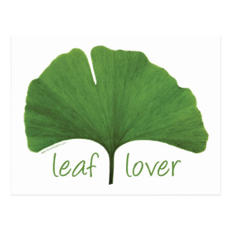 Leaf Lover Tree Hugger Post Card