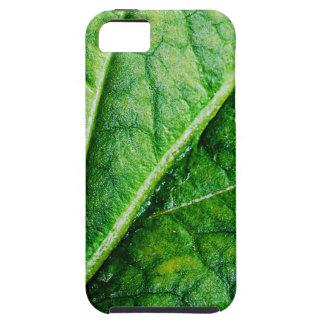 Leaf Macro iPhone 5 Cases