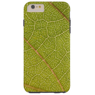Leaf Macro iPhone 6 Case Tough iPhone 6 Plus Case