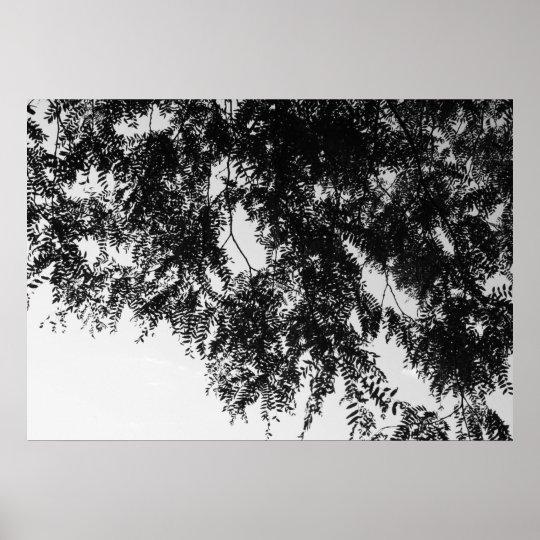 Leaf overhang poster