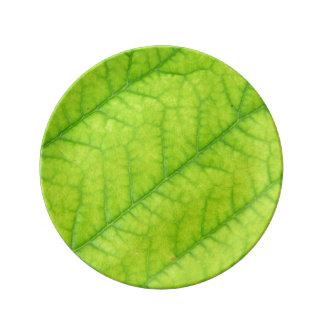 Leaf Porcelain Plate