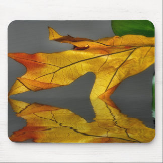 Leaf Reflection Mousepad
