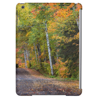 Leaf Strewn Gravel Road With Autumn Color