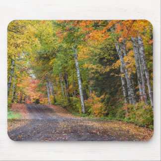 Leaf Strewn Gravel Road With Autumn Color Mouse Mat