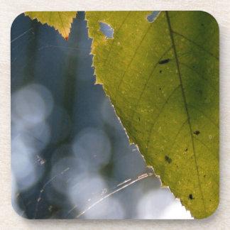 leaf string Zaz jpg Coaster