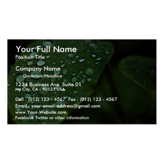 Leaf with raindrops business card
