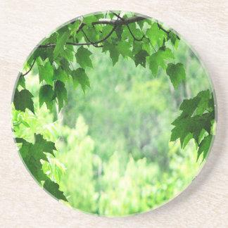 Leafy Green Coaster