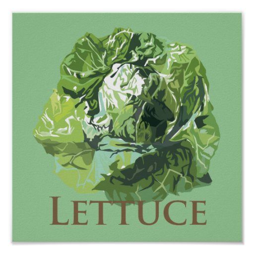 Leafy Lettuce Print