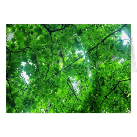 Leafy Tree Card