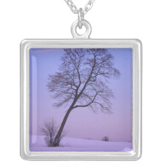 Leaning Tree in Snowy Field; Chippewa County; Silver Plated Necklace