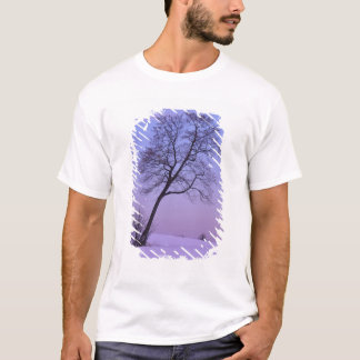 Leaning Tree in Snowy Field; Chippewa County; T-Shirt