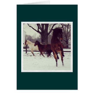 Leaping Avery Holiday Card Cards
