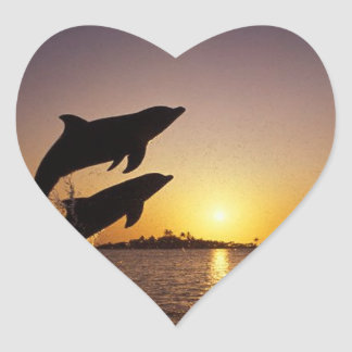 Leaping dolphins jump dive swim marine heart sticker