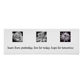 Learn, Live, Hope Posters