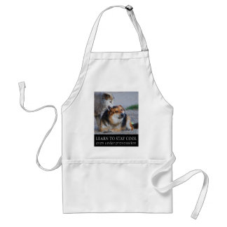 learn to stay cool adult apron