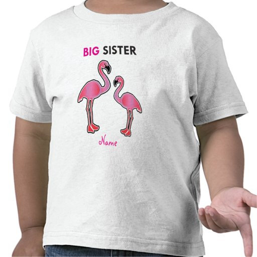 Learning Candy Big Sister Flamingo Personalized Tee Shirt