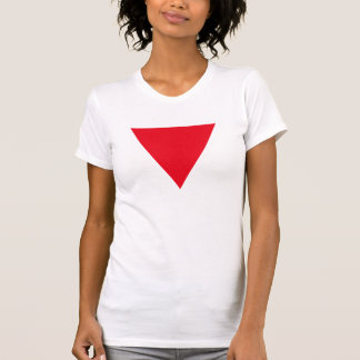 Leather Queer Pride T-Shirt