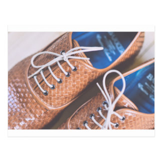 Leather Snakeskin Brown shoes Postcard