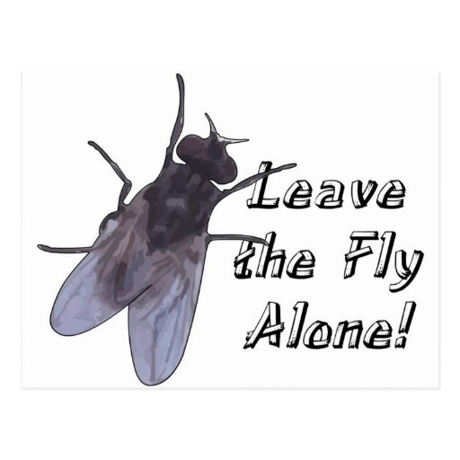 Leave the Fly Alone Post Card