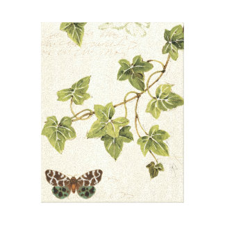 Leaves and a Butterfly Canvas Print