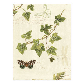 Leaves and a Butterfly Postcard