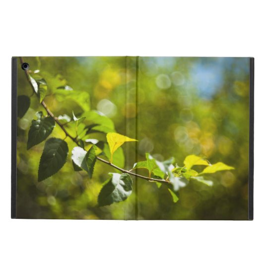 Leaves and bokeh iPad air case